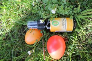 Ostern_Primavera_Orange_Airspray-3